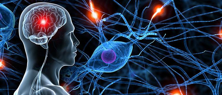 neurologische en zzenuwaandoeningen oorzaken van erectiestoornis